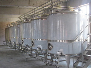 Blueberry beverage production line